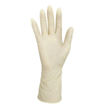 xl micro touch powder free latex surgical gloves